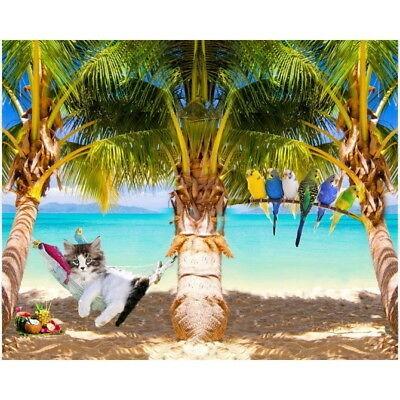 Stenzo Jersey-Panel Katze in Hängematte